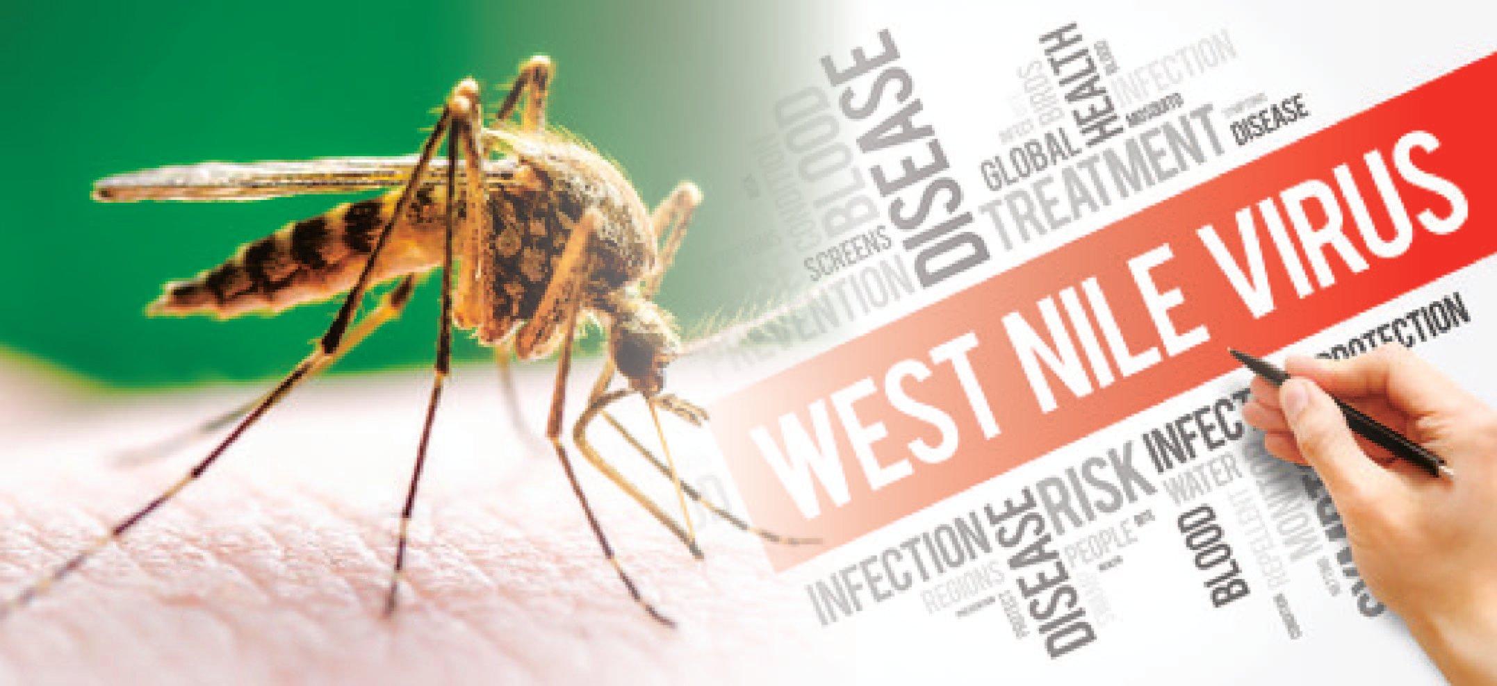 west_nile-03